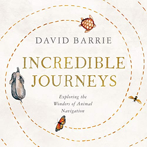 50) Incredible Journeys