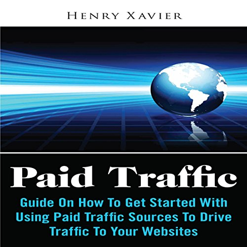 Paid Traffic: Guide on How to Get Started with Using Paid Traffic Sources to Drive Traffic to Your Website
