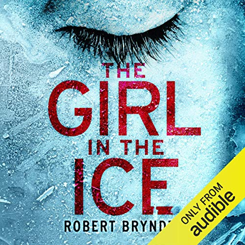 14) The Girl in the Ice: Detective Erika Foster Crime Thriller