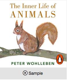 The hidden life of animals by Peter Wohllenben
